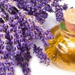 <b> Dầu hoa oải hương </b>giúp kiểm soát bã nhờn/ thư giãn.
